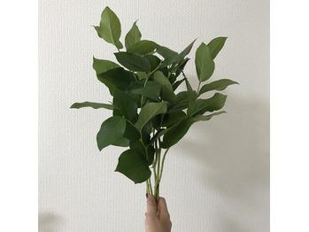 近所のお花屋さん*_20171013_2