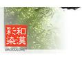 和漢彩染はオーソドックスなカラーとは違います。