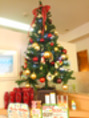セールとクリスマスツリー♪