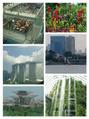 早めの夏休みinシンガポール