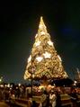 クリスマスディズニーへ☆