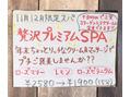11月12月限定☆贅沢プレミアムSPA