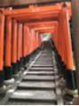 京都の旅 その2