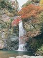 パワースポット箕面の滝♪