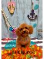 わんちゃんのトリミングサロン★LUXBE DOG★