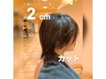 『まさブログ』2cmカット◎