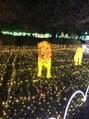 光の祭典!!