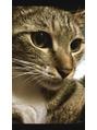 猫ちゃんミッチーの横顔