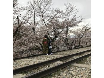 桜_20190408_2