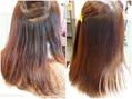 湿気対策 HAIR menou MOSS