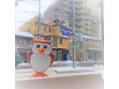 雪☆雪☆雪!