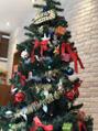 クリスマスツリー始めました(⌒▽⌒)