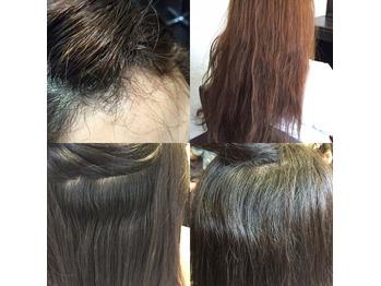 ★髪質改善通信133・圧倒的仕上がりの究極の縮毛矯正_20151118_1