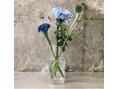 ///source///source select flower vase