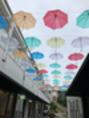 梅雨の季節を彩る傘