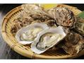 冬の食べ物 牡蠣