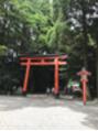 鹿児島神宮でパワーチャージ☆彡