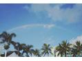 Hawaii♪♪