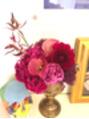 サロンを飾るPower溢れるお花たち(^^)