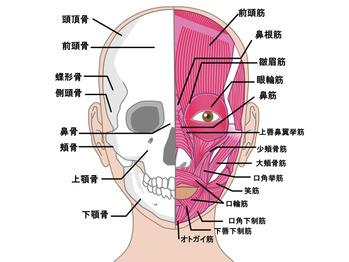 慢性頭痛・偏頭痛・筋緊張性頭痛_20210907_2