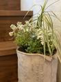 お花や植物でストレス軽減(^^)
