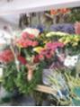 お気に入りの花屋さん
