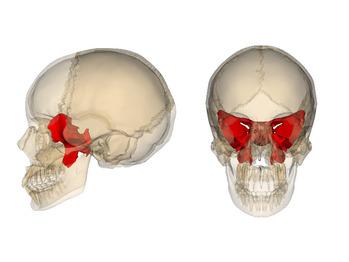 20代女性毎日の頭痛・吐き気を整体で開放へ_20210907_2