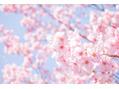 4月キャンペーン♪男性脱毛スタート!!