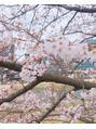 【桜満開】自分磨きしませんか?【美しさ満開】