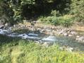 川の音♪♪