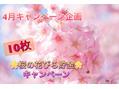 平成最後!!4月のキャンペーン☆彡