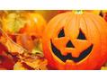 かぼちゃには…