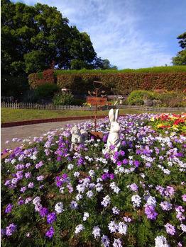 多摩川台公園での散歩は楽しい_20210509_3