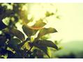 『夏専用のスキンケア』で紫外線ダメージを防ごう!