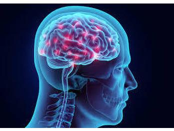 脳が記憶しています! だから、、、  part3_20191214_1
