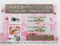 ココラブリゾート 高陽(CoCoLOVE RESORT)まつ毛エクステ☆5周年スペシャル価格