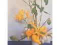 サロンに飾っているお花。