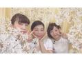 春爛漫(*^▽^*)♪