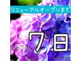 ☆リニューアルOPENまで後★7日★