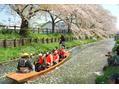 「小江戸川越春祭り」 一部、交通規制がございます