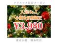 【クリスマス限定クーポン3980】