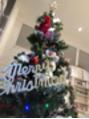 クリスマス前に!!