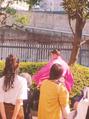 タイ古式マッサージ スッカパープ 立川店(SUKKAPARP)☆秋は大相撲9月場所☆