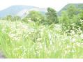 岡山に日帰り小旅行☆趣味の一眼レフカメラを持って