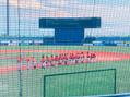 野球観戦 ☆