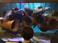 竹島水族館にいってきました