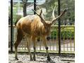多摩動物公園・・☆