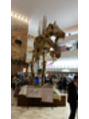 恐竜ランドの恐竜ソフト