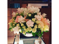 今週のお花☆