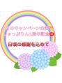 5月は!!2周年キャンペーン(*^▽^*)